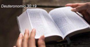 Deuteronomio 30:19